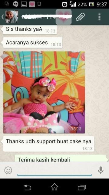 testimonial cake minnie